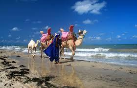 Muslim dating (rencontre) pour célibataires musulmans au soleil de Tunisie