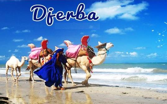 Excursion d'une journée à l'île de Djerba