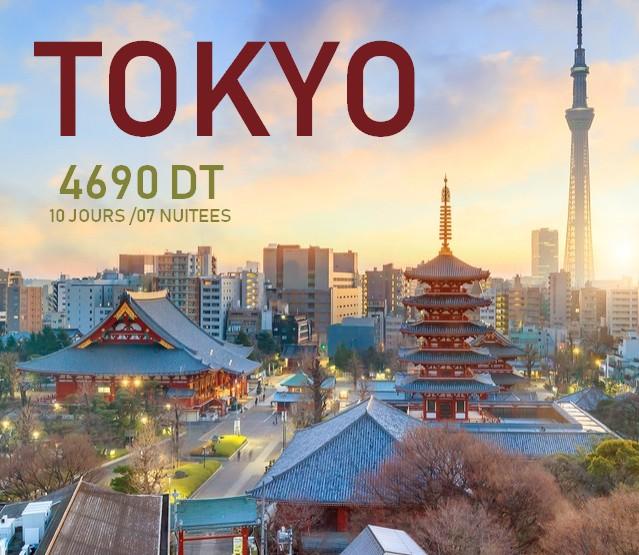 Voyage à Tokyo 09 jours / 07 nuits